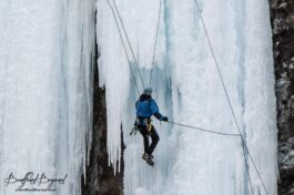 Photo Gallery Of Ice Climbers At Johnston Canyon