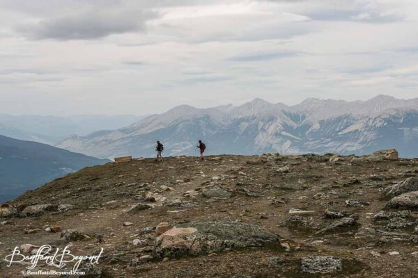 hikers on whistlers mountain summit trail