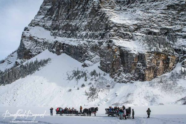 view of horse drawn sleighs in lake louise with mountains