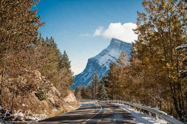 mount-rundle-view-driving-to-mount-norquay-scenery-trees