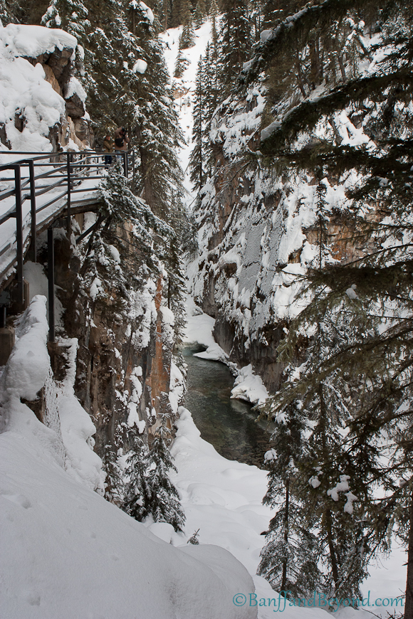 johnston-canyon-winter-ice-hike-trail-snow-trees-steel-catwalk