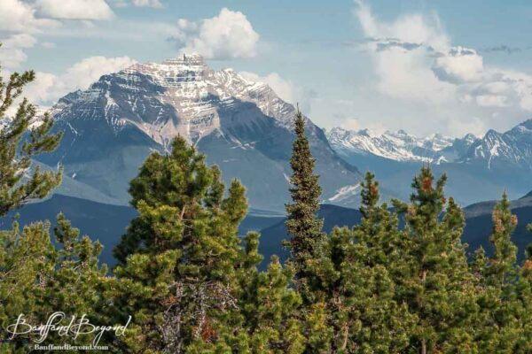 edith cavell mountain in jasper national park