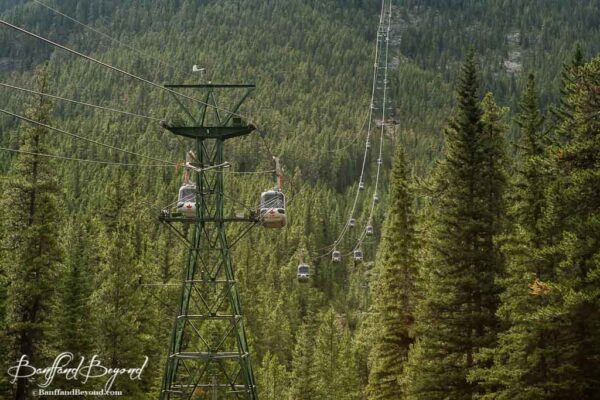gondola-sulphur-mountain-banff-tram-lift-cable-car-views-vistas-trees-high-elevation