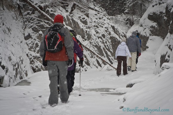 hikers-winter-frozen-creek-grotto-canyon-backpack-snowing-ice-valley-canmore-alberta-back-country