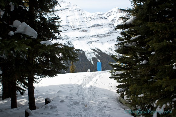 snow-covered-trail-peyto-lake-lookout-mountain-views-winter-bow-summit-trees