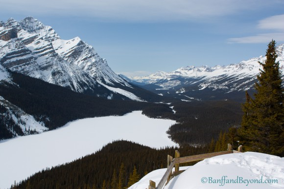 view frozen peyto lake and valley from snow covered viewing lookout platform