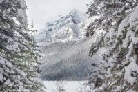 Lake Louise Winter Wonderland Photo Gallery