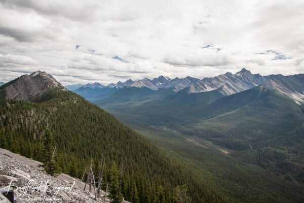 view through spray valley from banff sulphur mountain gondola