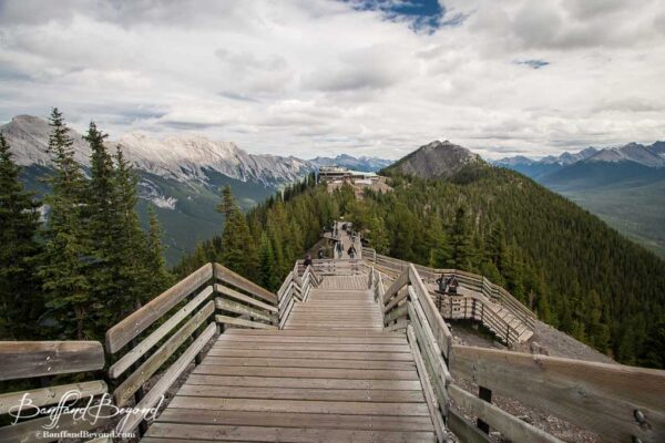 wooden walkways on top of sulphur mountain leading to gondola