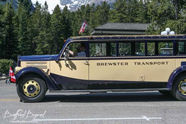 antique brewster transport bus in lake louise canada day parade