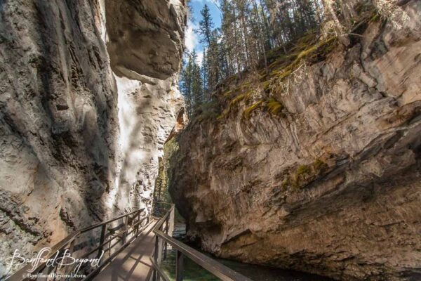 catwalk suspended from the johnston canyon cliffs