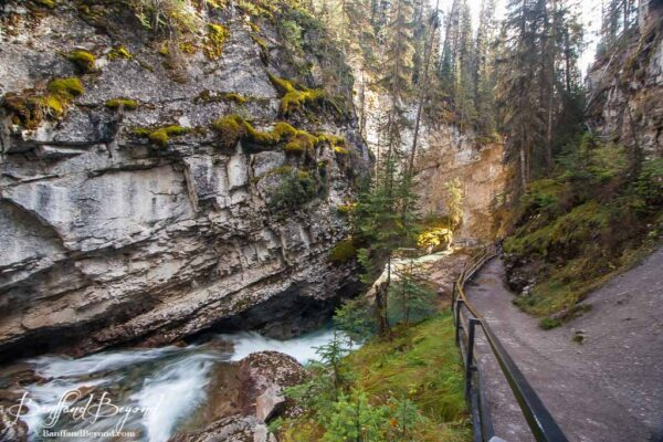 hiking trail in johnston canyon in banff