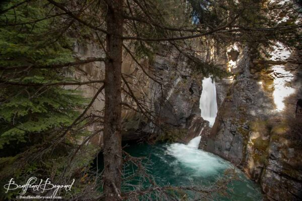 lower falls in johnston canyon trail