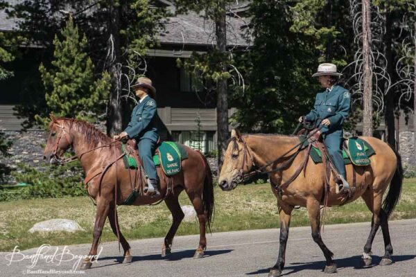 parks canada employees riding horseback in canada day lake louise parade