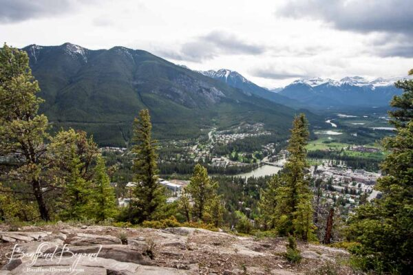 view of banff town and bow river from the tunnel mountain summit trail