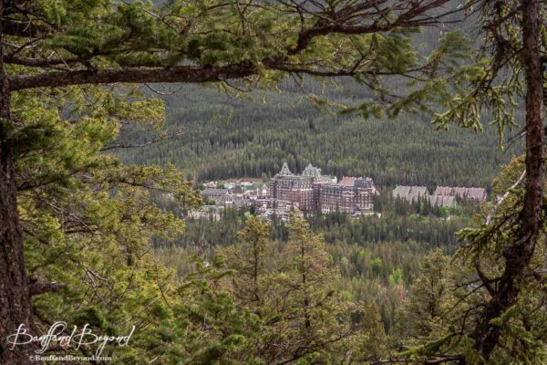 view of the banff springs hotel from the tunnel mountain summit hike