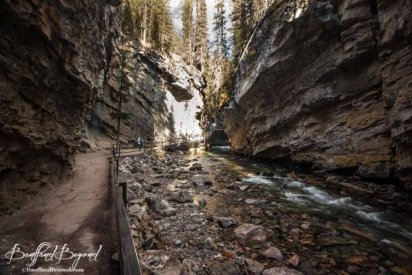 view of trails and catwalks in johnston canyon