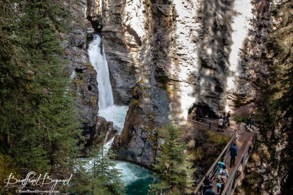 viewing platform and bridge for lower johnston canyon falls
