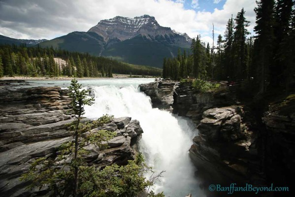 athabasca-falls-attraction-icefields-parkway-trails-hiking-water-mountains
