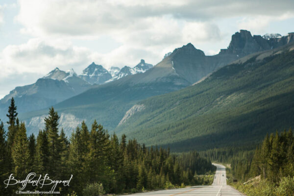majestic mountain views along the icefields parkway