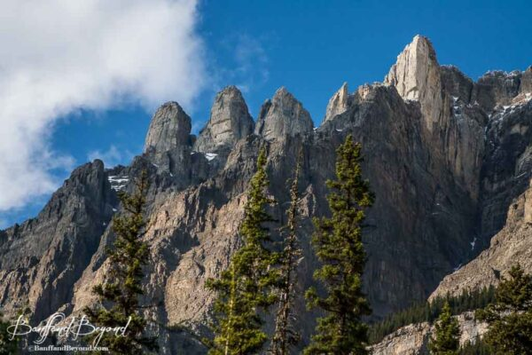 rugged mountain tops along the icefields parkway