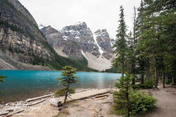 shoreline trail views at moraine lake