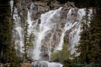 Tangle falls along the icefields parkway