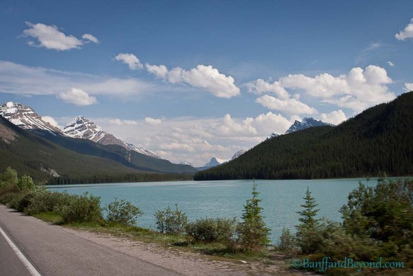 waterfowl-lake-camping-columbia-icefields-parkway