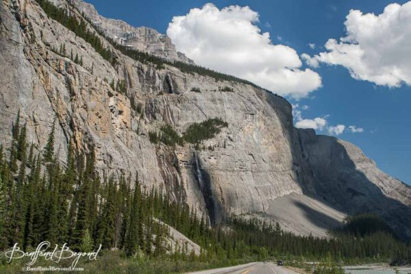 weeping wall mountain on the icefields parkway