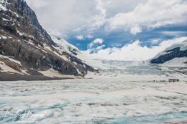Experience One Of The Worlds Most Accessible Glaciers