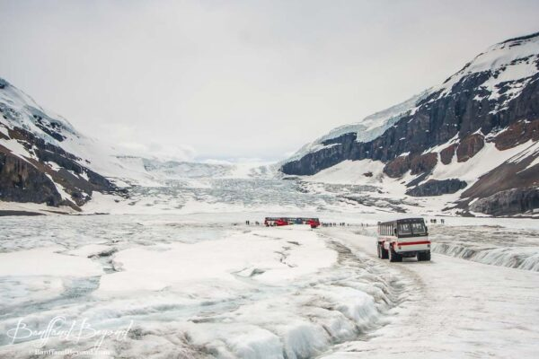 ice explorers at the columbia icefields glacier