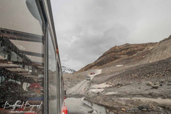 traveling along the road leading to the athabasca glacier