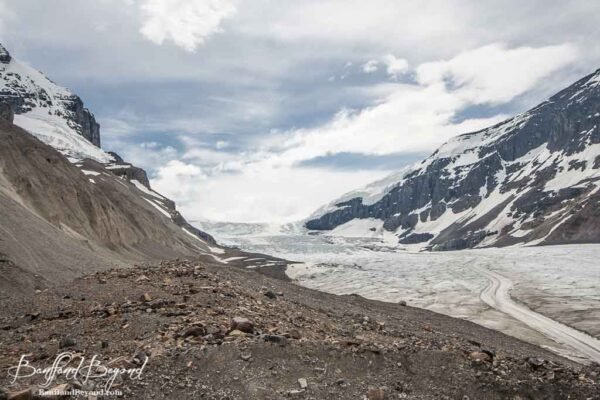 view of columbia icefields
