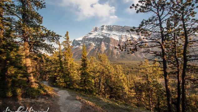 A Taste Of The Fall Season In Banff National Park