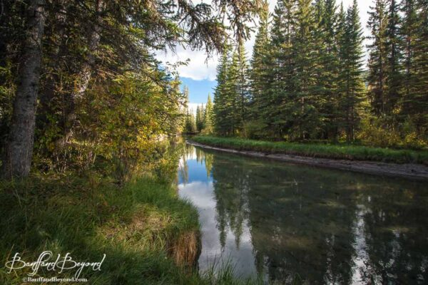 fenland-banff-lesser-visited-trail-quiet-tranquil-walk-along-forty-mile-creek