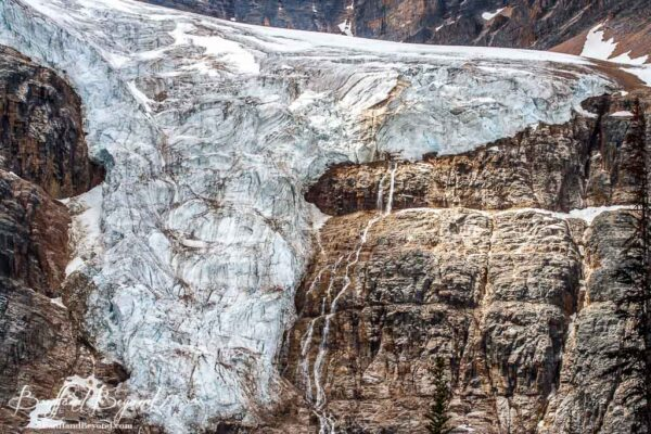 beautiful angel glacier on mount edith cavell