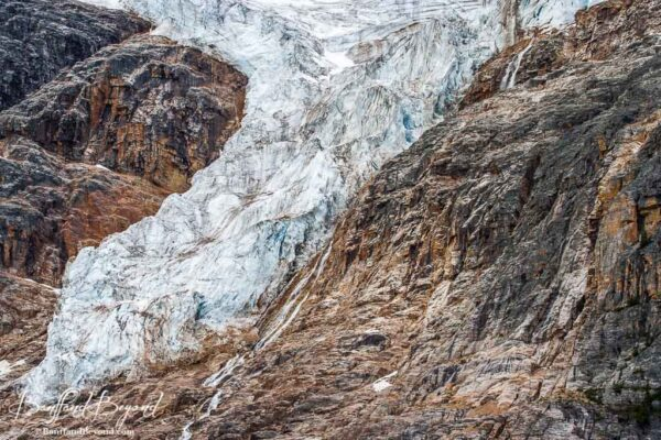 close up of cavell glacier