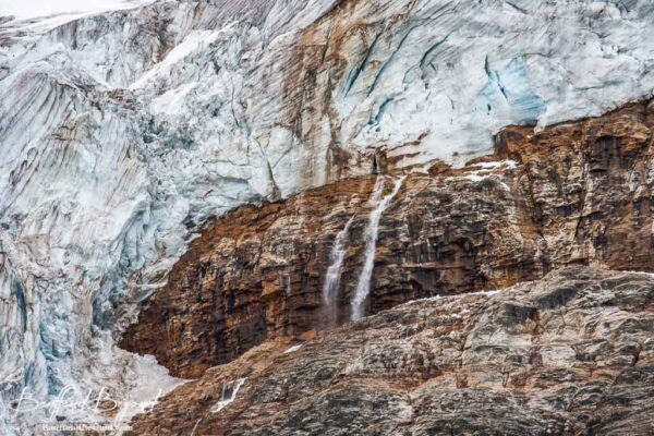 close up of cavell glacier and run off