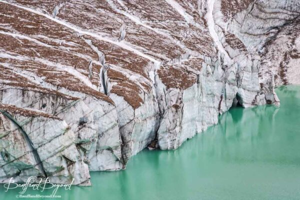 close up of cavell pond and glacier