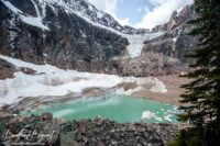Path Of The Glacier Trail At Mount Edith Cavell