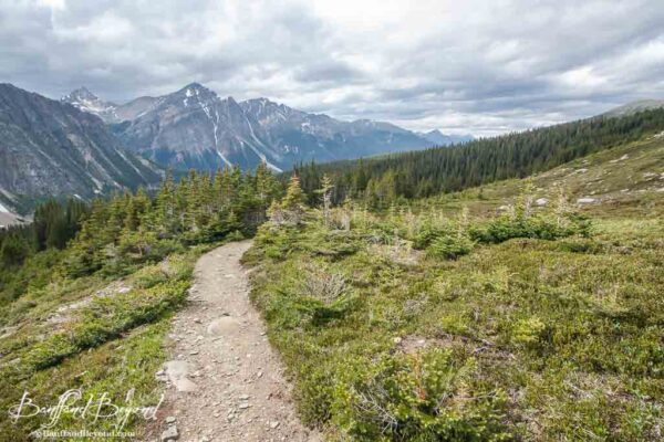 hiking-cavell-meadows-mount-edith-cavell-jasper-national-park-rockies-tourist-attractions-views