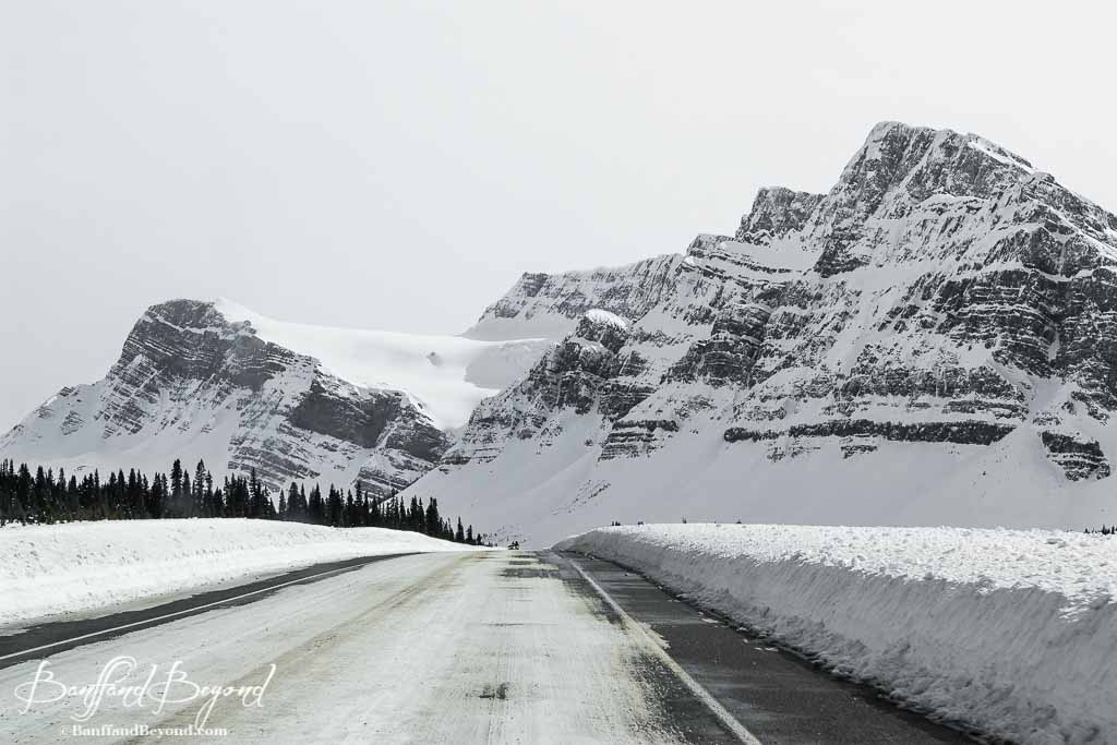 Tips For Driving The Icefields Parkway | BanffandBeyond