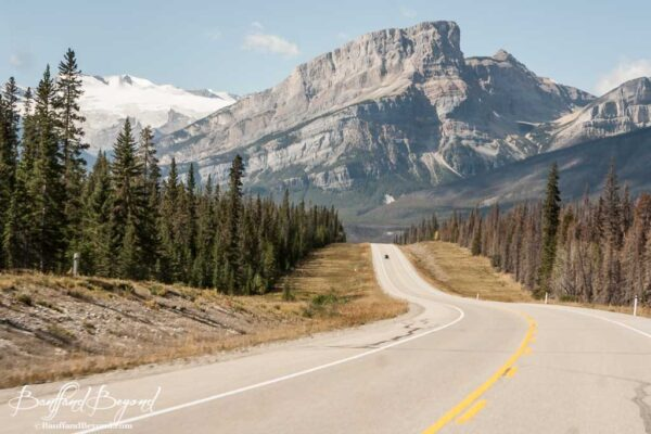 spectacular mountain views along the icefields parkway
