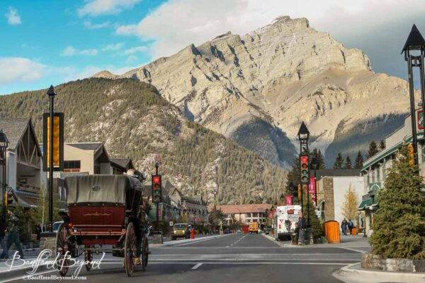 horse drawn carriage going through downtown banff avenue