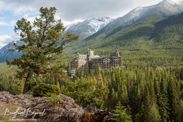 view of banff springs hotel with backdrop of mountains and trees from surprise corner