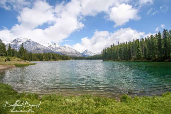 johnson-lake-locals-swimming-hangout-banff-lesser-visited-places-off-the-beaten-path
