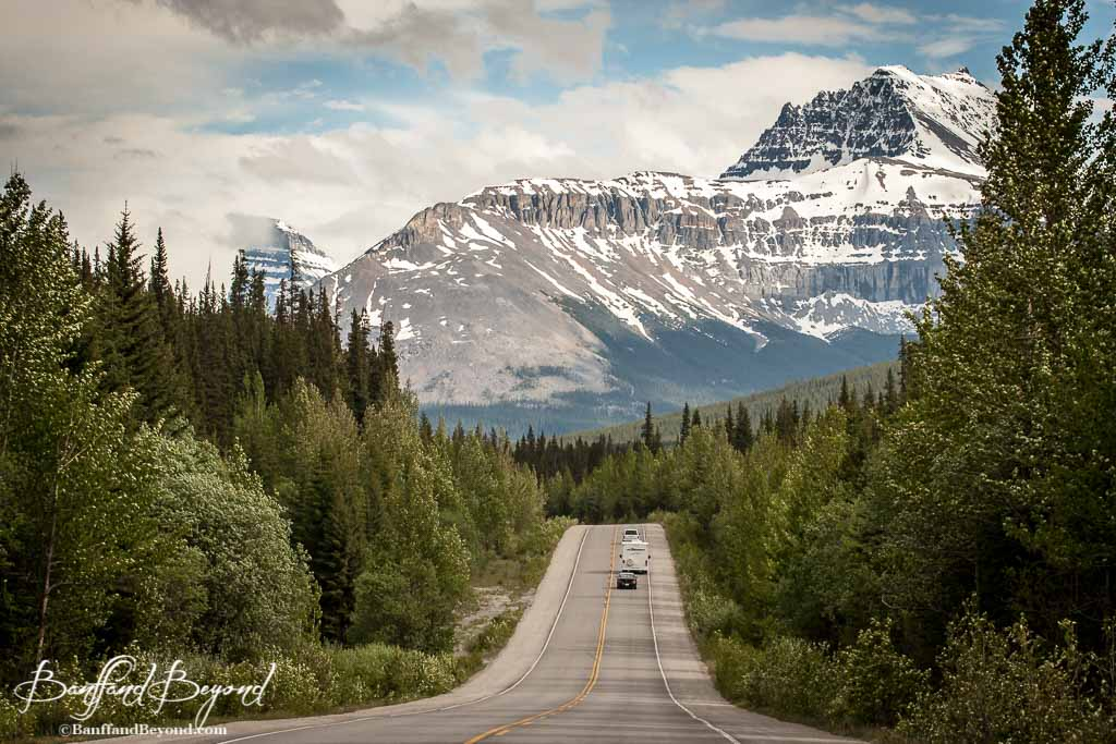 Scenic Self Driving Tour Icefields Parkway Summer Mountain