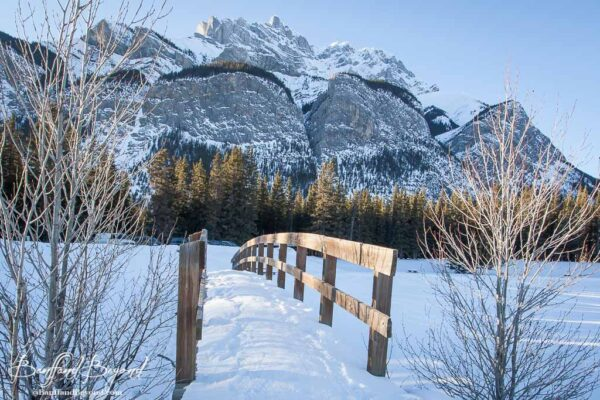 wooden-bridge-cascade-ponds-winter-walks-banff