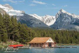 The Scenic Maligne Lake Drive