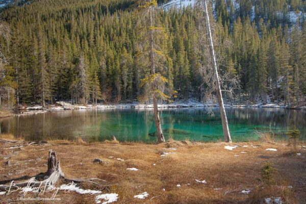 grassi-lakes-easy-hiking-trail-walk-canmore-aqua-blue-water-glacier-mountain-tourist-attraction